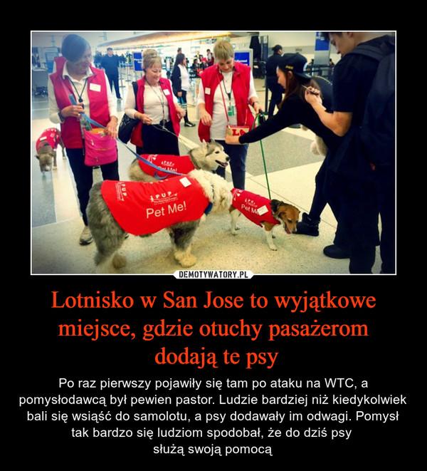 Lotnisko w San Jose to wyjątkowe miejsce, gdzie otuchy pasażerom dodają te psy – Po raz pierwszy pojawiły się tam po ataku na WTC, a pomysłodawcą był pewien pastor. Ludzie bardziej niż kiedykolwiek bali się wsiąść do samolotu, a psy dodawały im odwagi. Pomysł tak bardzo się ludziom spodobał, że do dziś psy służą swoją pomocą